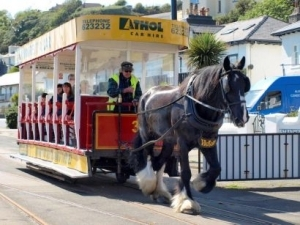 Douglas horse tram service to be discontinued